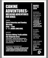 Canine Adventures- Weekend Adventures for Dogs!