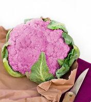 50 Cavolfiore Violetto Di Sicilia Precoce Vegetable Seeds Sementi Semi Orto -  - ebay.it