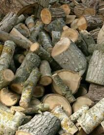 seasoned apple logs firewood