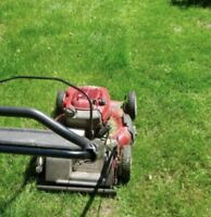 Lawn mowing every 7-10 days: Musq Hbr