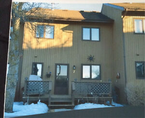 Beautiful and Affordable, Winnipeg Beach Condo $165,000.00