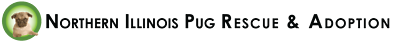 Northern Illinois Pug Rescue & Adoption, Inc.