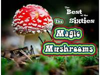 The Magic Mushrooms - best of the sixties