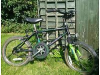 Raleigh activator bike