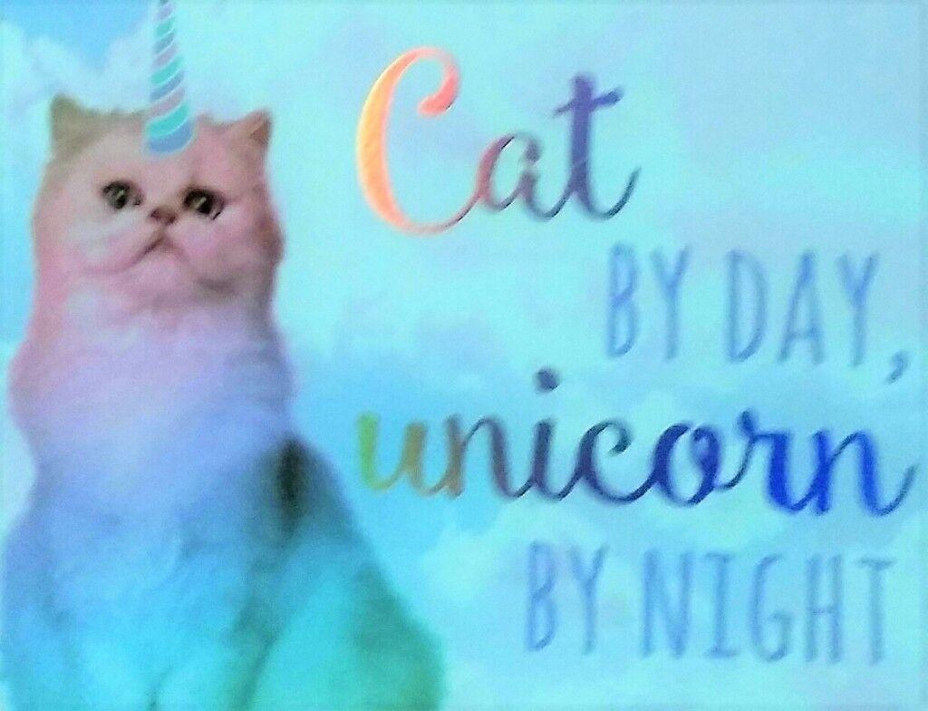 New Cat Sign