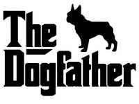 Dog walking £7 grooming available soon