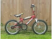 Little boy's bike