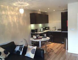 2 bedroom, 2 bath city centre apartment NR1