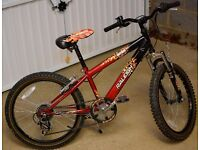 """Raleigh Hotrod 20"""" Mountain Bike with Stand"""