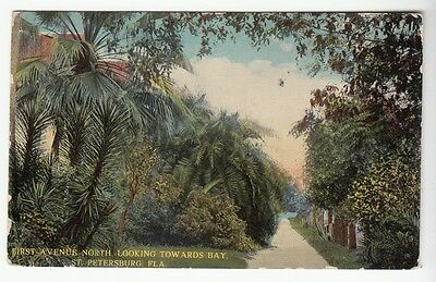 [50882] OLD POSTCARD FIRST AVENUE NORTH TOWARDS THE BAY, St. PETERSBURG, FLORIDA