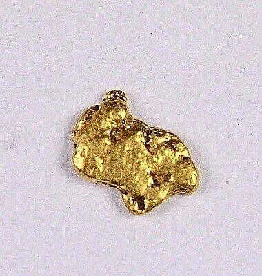 Alaskan-Yukon BC Natural Gold Nugget 0.25 Grams Genuine From Special Lot
