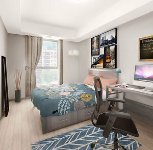 Brand New 1 Bedroom Lease Takeover - Sept. 1 to Aug. 31, 2018