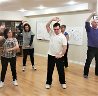 5 Element Qigong - Learn the set in 3 Hours (Tai Chi Lessons)