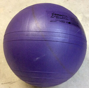 55cm/21 inch Exercise Ball