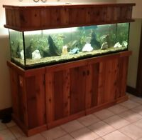 125 gallon aquarium