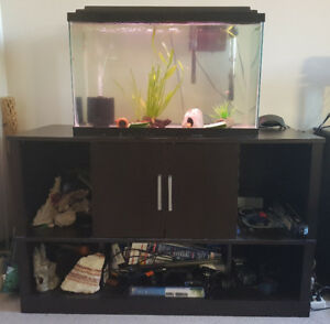 30 gallon complete set up(just add fish)