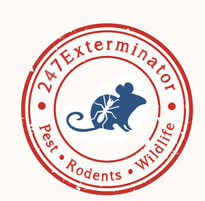 Pest Control Service 24 Hours FREE QUOTE  Lowest Rates