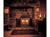 Clearview 750 multi fuel wood burning stove