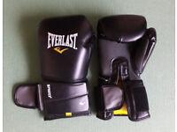 Boxing Gloves Everlast Protex 2 14oz with 2x Everlast Punch Kick Mitt and 2x Glove Deodoriser
