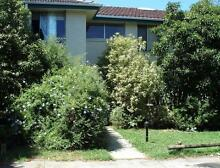 Room in Good value Guesthouse Clayton near Monash Uni Clayton Monash Area Preview
