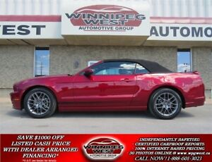 2014 Ford Mustang 305HP, PREMIUM EDITION, LOADED & FLAWLESS!!