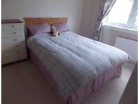 Extra Long king size bed