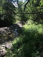 AMAZING PROPERTY WITH ACCESS TO THE WAPITI RIVER
