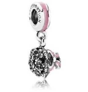 Pandora Charm Brand New, Exclusive to the USA, Can't buy here