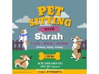 Pet Sitting/Dog Walking Service