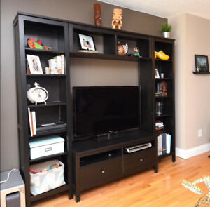 Tv Entertainment Unit - Shelving system & TV Stand