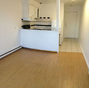 Near McGill New Renovated 2 1/2 Apartment Available for August !