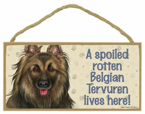 A spoiled rotten Belgian Tervuren lives here! Wood Dog Sign Plaque Made in USA