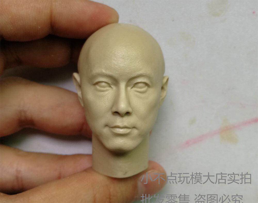 """1//6 scale blank Head Sculpt Young and dangerous Roy Cheung unpainted fit 12/"""""""