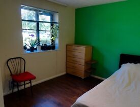 Big Double Room for a Female