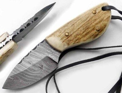 The knife king's Damascus Steel Stag Gato Best Skinner knife with