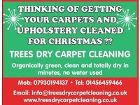 TREES DRY CARPET CLEANING- green, clean & DRY in minutes !! DRY CARPET & UPHOLSTERY CLEANING