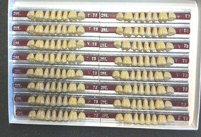 Dentsply New Hue Dentist Dental Lab Porcelain Denture Teeth  29l  U 73b4