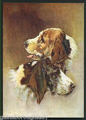 OTTERHOUND DOG POSTCARD-DE RESZKE CIGARETTE CARD -GODFREY PHILLIPS. No 30.