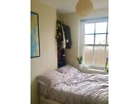 Lovely room in flat share in Bethnal Green