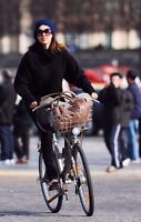 Looking for Everyday Women's Bike