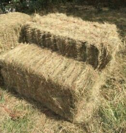 Hay bale ,horse, rabbit ,bedding, for sale