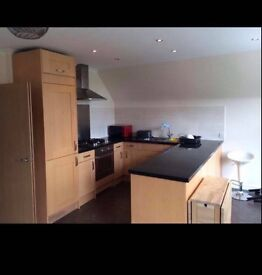 Good size single room to share in two bedroom flat