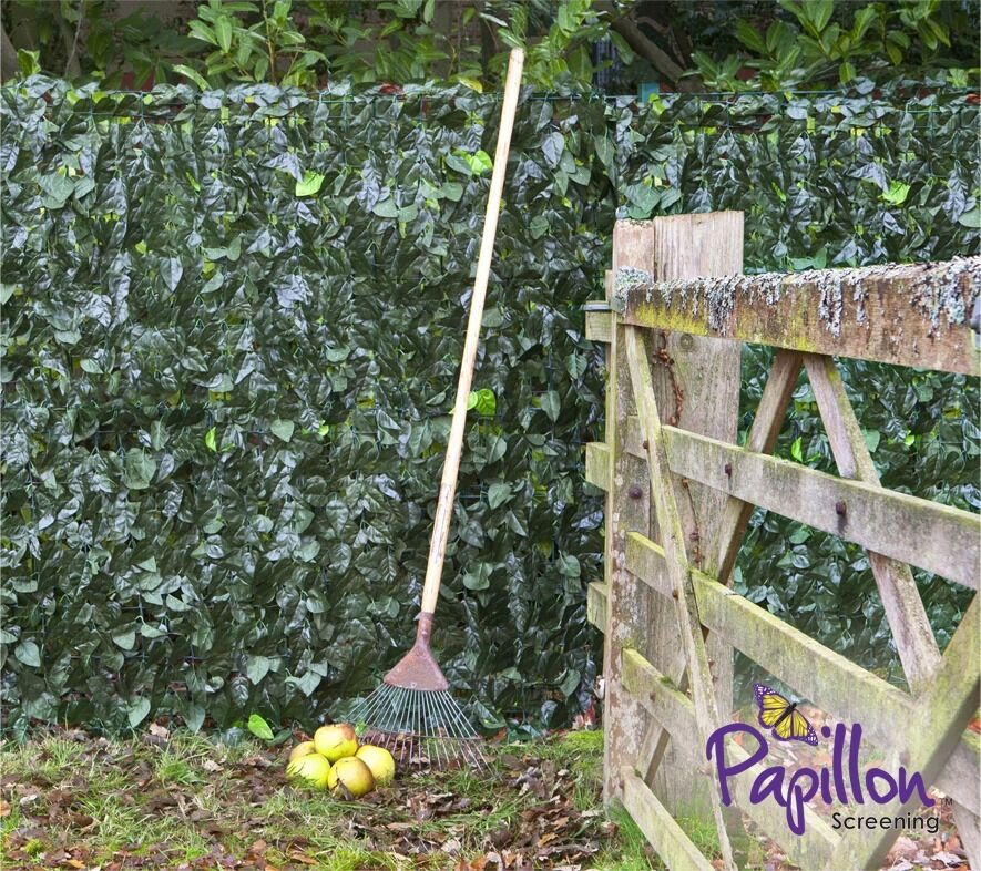 New Unused3.0m x 1.5m Ivy Hedge Artificial Screening by PapillonFor Gardenin Calcot, BerkshireGumtree - For Sale New Unused 3.0m x 1.5m Ivy Hedge Artificial Screening by Papillon™ For Garden Was brought over a month ago, used during a garden refurbishment though brought more than required and unable to return the surplus to store as over 30 days....