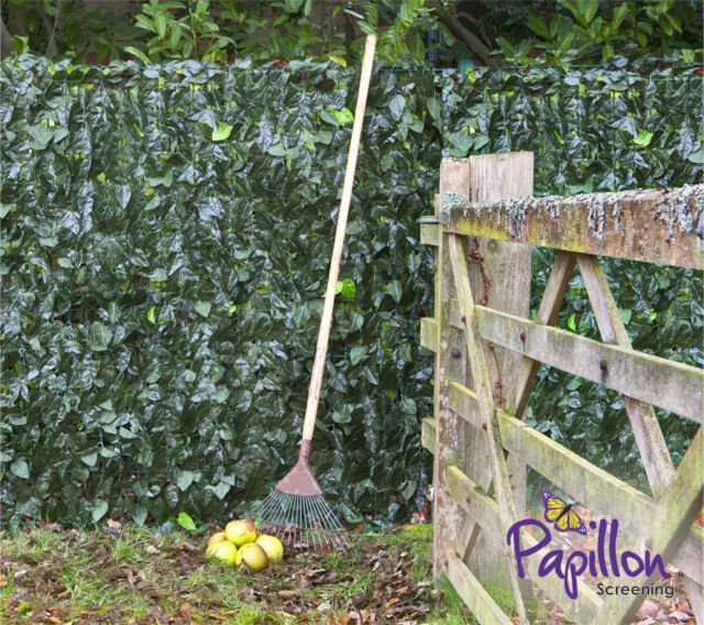 garden screen. Artificial Ivy Leaf Hedge Screening 1m X 3m Privacy Screen Garden Fence Panels