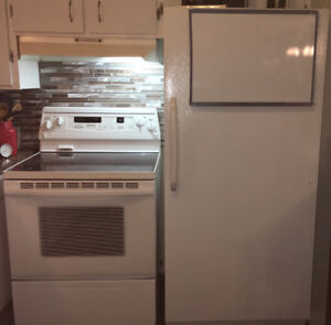 Refrigerator and stove, great condition
