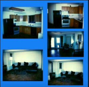 Beautiful Fairmont South basement suite fully funished