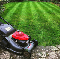 Grass cutting services and hedge pruning