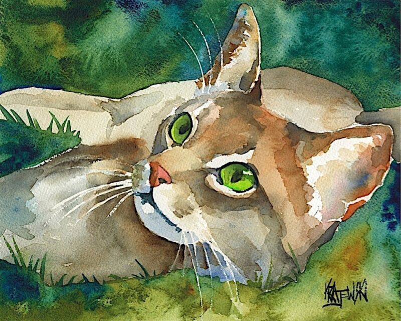 Abyssinian Cat 11x14 signed art PRINT painting RJK