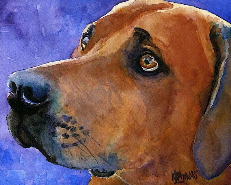 Rhodesian Ridgeback Dog 11x14 signed art PRINT RJK