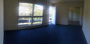 Myall Street Unit Norman Park Brisbane South East Preview